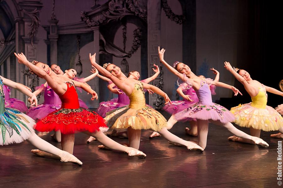 02 Danse # Ballet Belle Au Bois Dormant